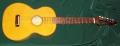 Wiener guitar